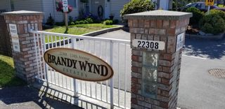 Photo 1: 10 22308 124th AVENUE in BRANDY WYND: Home for sale : MLS®# R2383704