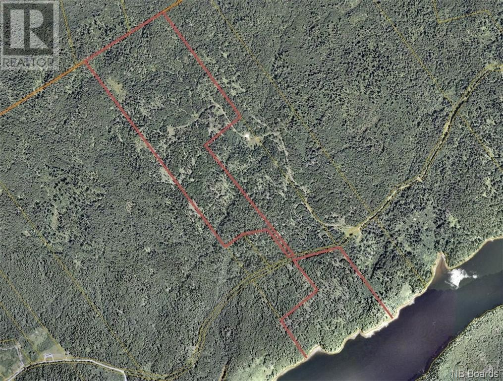 Main Photo: - Thorpe Road in Letang: Vacant Land for sale : MLS®# NB057578