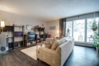 Photo 7: 414 1305 Glenmore Trail SW in Calgary: Kelvin Grove Apartment for sale : MLS®# A1067556