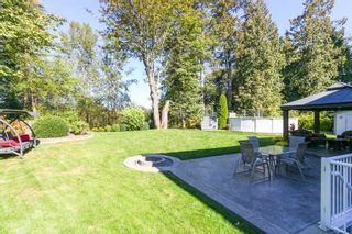 Photo 16: 23809 TAMARACK Place in Maple Ridge: Albion House for sale : MLS®# R2108762