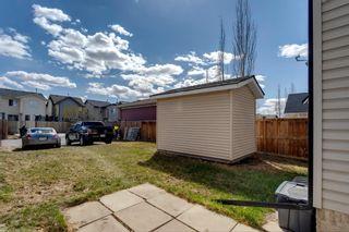 Photo 24: 13 Auburn Bay View SE in Calgary: Auburn Bay Detached for sale : MLS®# A1099735