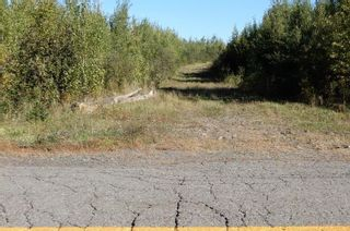 Photo 2: 40+/- acres Old Pictou Road in Hedgeville: 108-Rural Pictou County Vacant Land for sale (Northern Region)  : MLS®# 202125401