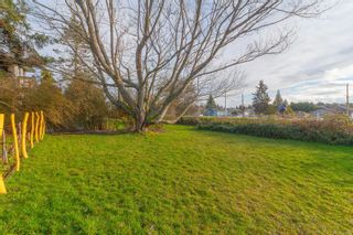 Photo 26: 213 Crease Ave in : SW Tillicum House for sale (Saanich West)  : MLS®# 863901