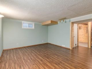 Photo 31: 95 Ferncliff Crescent SE in Calgary: Fairview Detached for sale : MLS®# A1064499