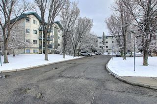 Photo 3: 110 11 Dover Point SE in Calgary: Dover Apartment for sale : MLS®# A1096781