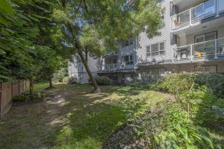 """Photo 20: 209 5577 SMITH Avenue in Burnaby: Central Park BS Condo for sale in """"COTTONWOOD GROVE"""" (Burnaby South)  : MLS®# R2495074"""