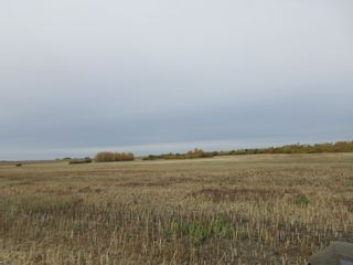 Photo 6: RR 270 North of Hwy 37: Rural Sturgeon County Rural Land/Vacant Lot for sale : MLS®# E4265129