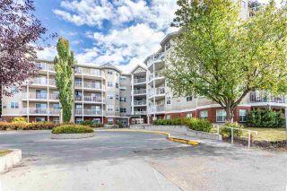 Photo 1: 102 8315 83 Street in Edmonton: Zone 18 Condo for sale : MLS®# E4229609