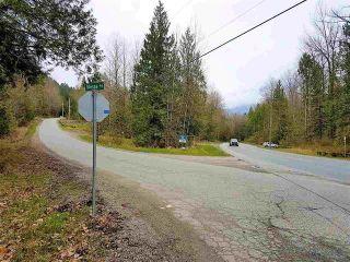 Photo 9: 4160 SLESSE Road in Sardis - Chwk River Valley: Chilliwack River Valley Land for sale (Sardis)  : MLS®# R2516369