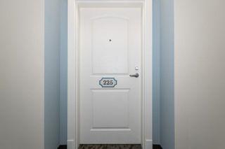 Photo 3: 225 9820 165 Street in Edmonton: Zone 22 Condo for sale : MLS®# E4261600