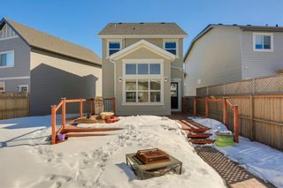 Photo 38: 64 NEW BRIGHTON Grove SE in Calgary: New Brighton Detached for sale : MLS®# C4233514