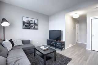 Photo 16: 201 135 Redstone Walk NE in Calgary: Redstone Apartment for sale : MLS®# A1060220