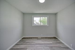 Photo 17: 39 Aberdare Road NE in Calgary: Abbeydale Detached for sale : MLS®# A1127004