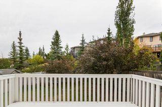 Photo 32: 201 MACEWAN PARK View NW in Calgary: MacEwan Glen Detached for sale : MLS®# C4232497