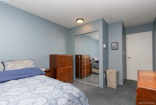 Photo 9: 302 2747 Quadra St in VICTORIA: Vi Hillside Condo for sale (Victoria)  : MLS®# 767550