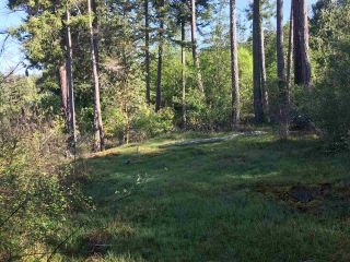 Photo 2: LOT 55 ORCA ROAD in Garden Bay: Pender Harbour Egmont Land for sale (Sunshine Coast)  : MLS®# R2267132