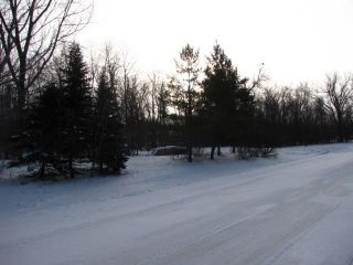 Photo 2: 7 Precourt PL in Cartier Rm: Elie / Springstein / St. Eustache Residential for sale (Manitoba Other)  : MLS®# 1100450