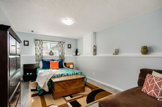 Photo 19: 156 Coverton Close NE in Calgary: Coventry Hills Detached for sale : MLS®# A1150805