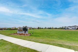 Photo 49: 23 Royal Crest Way NW in Calgary: Royal Oak Detached for sale : MLS®# A1118520