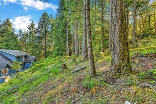 Photo 36: 724 Caleb Pike Rd in Highlands: Hi Western Highlands House for sale : MLS®# 842317