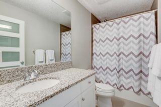 Photo 33: 507 28 Avenue NW in Calgary: Mount Pleasant Semi Detached for sale : MLS®# A1097016