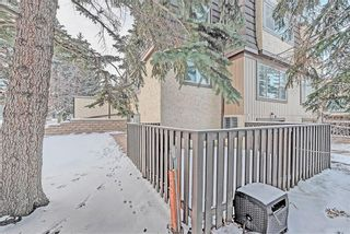 Photo 20: 104 3130 66 Avenue SW in Calgary: Lakeview House for sale : MLS®# C4162418