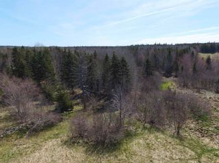 Photo 16: 141 Scotch Lake Road in Georges River: 204-New Waterford Vacant Land for sale (Cape Breton)  : MLS®# 202102227