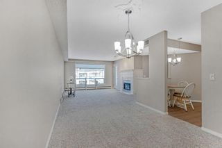 Photo 14: 319 9449 19 Street SW in Calgary: Palliser Apartment for sale : MLS®# A1050342
