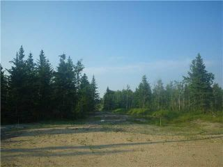 Photo 9: 314 55504 Rge Rd 13: Rural Lac Ste. Anne County Rural Land/Vacant Lot for sale : MLS®# E4213581