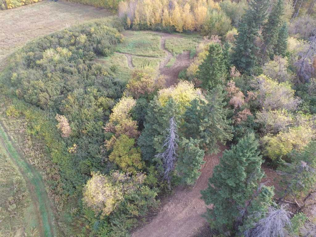 Photo 8: Photos: N1/2 SE19-57-1-W5: Rural Barrhead County Rural Land/Vacant Lot for sale : MLS®# E4217154