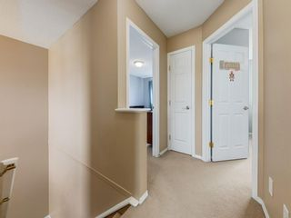 Photo 19: 17 ROYAL ELM Way NW in Calgary: Royal Oak Detached for sale : MLS®# A1034855