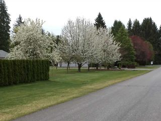 Photo 38: 4884 246A Street in Langley: Salmon River House for sale : MLS®# R2535071