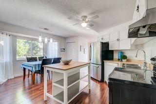 Photo 15: 4128 37 Street in Edmonton: Zone 29 House for sale : MLS®# E4253899