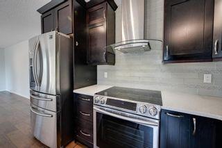 Photo 10: 227 FERGUSON Place in Edmonton: Zone 14 House for sale : MLS®# E4256988