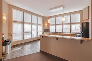Photo 33: 142 20 ROYAL OAK Plaza NW in Calgary: Royal Oak Apartment for sale : MLS®# C4297596