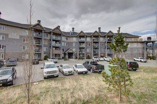 Photo 3: 417 3645 Carrington Road in West Kelowna: Westbank Centre Multi-family for sale (Central Okanagan)  : MLS®# 10229820