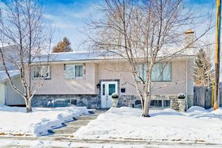 Photo 2: 127 Manora Drive NE in Calgary: Marlborough Park Detached for sale : MLS®# A1074589