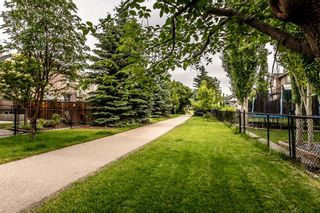 Photo 46: 78 CRYSTAL SHORES Place: Okotoks Detached for sale : MLS®# A1009976
