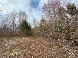 Photo 4: Sherbrooke Road in Greenvale: 108-Rural Pictou County Vacant Land for sale (Northern Region)  : MLS®# 202112435