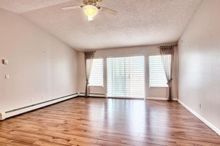 Photo 19: 509 55 ARBOUR GROVE Close NW in Calgary: Arbour Lake Apartment for sale : MLS®# A1096357