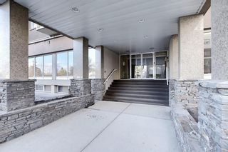 Photo 36: 302 429 14 Street NW in Calgary: Hillhurst Apartment for sale : MLS®# A1075167