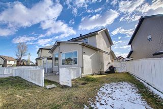 Photo 26: 141 SADDLEMEAD Road in Calgary: Saddle Ridge Detached for sale : MLS®# A1052360