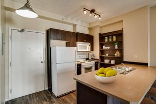 Photo 8: 3309 73 Erin Woods Court SE in Calgary: Erin Woods Apartment for sale : MLS®# A1150602