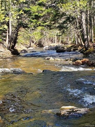 Photo 5: - Route 755 in Tower Hill: Vacant Land for sale : MLS®# NB055567