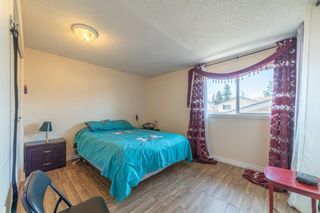 Photo 9: 4333 58 Street NE in Calgary: Temple Detached for sale : MLS®# A1092710