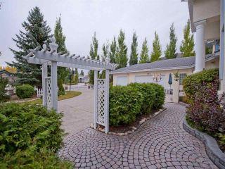 Photo 25: 223 Wilson Lane in Edmonton: Zone 22 House for sale : MLS®# E4220385