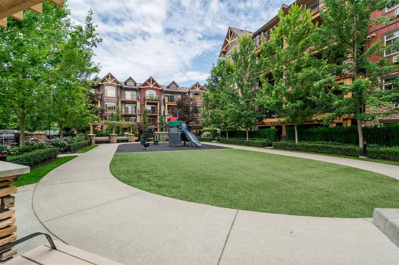 """Main Photo: 321 8288 207A Street in Langley: Willoughby Heights Condo for sale in """"Yorkson Creek"""" : MLS®# R2529591"""
