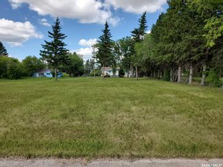 Photo 2: 110 McCallum Street in Rose Valley: Lot/Land for sale : MLS®# SK860592