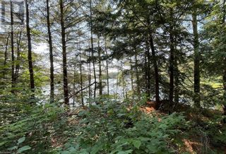 Photo 9: 17 PAULS BAY Road in McDougall: Vacant Land for sale : MLS®# 40146136