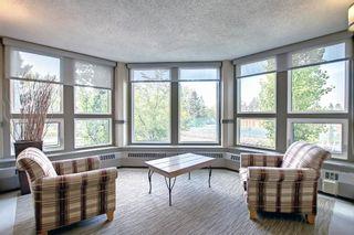 Photo 26: 327 820 89 Avenue SW in Calgary: Haysboro Apartment for sale : MLS®# A1145772